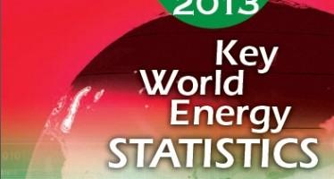 Dati statistici sull'energia 2013