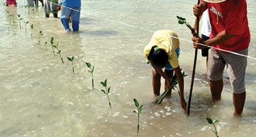 Cambiamento climatico 2014: impatti, adattamento e vulnerabilità