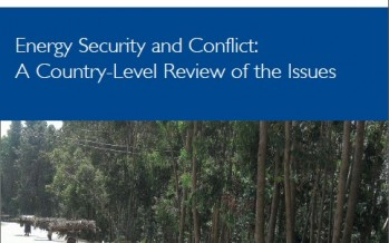 Energy Security and Conflict: A Country-Level Review of the Issues