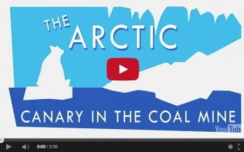 Why the Arctic is climate change's canary in the coal mine