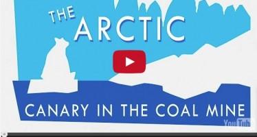 Perché l'Artico è il primo segnale di allarme del clima