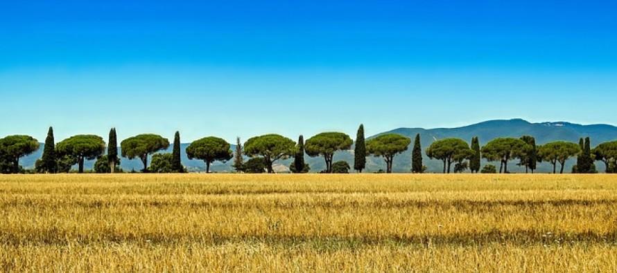 In Italia emissioni in calo e dipendenza energetica ai minimi, grazie anche alle rinnovabili