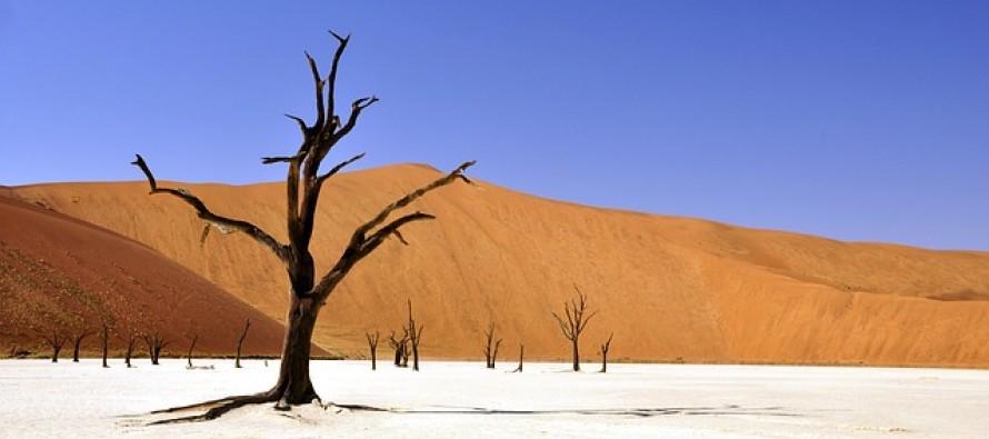 Che cosa davvero causa il riscaldamento della Terra?