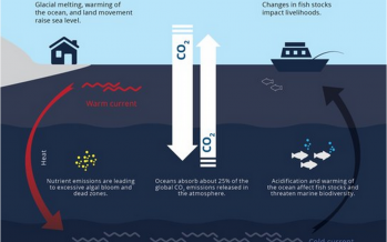 Climate change and the seas