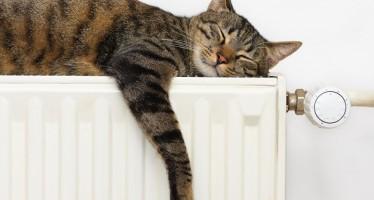 Decalogo per risparmiare sul riscaldamento domestico in 10 mosse