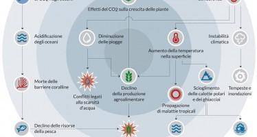 Cause ed effetti dei cambiamenti climatici