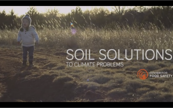 Soil solutions to climate problems