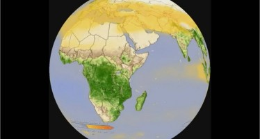 The carbon cycle seen from space