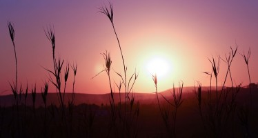 Piccoli impianti di energia solare illuminano l'Africa rurale
