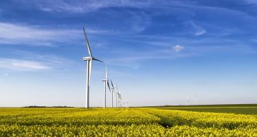 L'energia utilizzata nel mondo è sempre più pulita grazie anche all'eolico