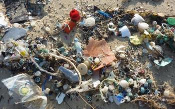 Plastica e microplastiche: la minaccia dei nostri oceani
