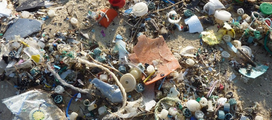38 million pieces of plastic waste found on uninhabited South Pacific island