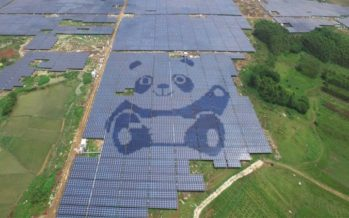 Panda Green surpasses 1.5GW of grid-connected solar assets