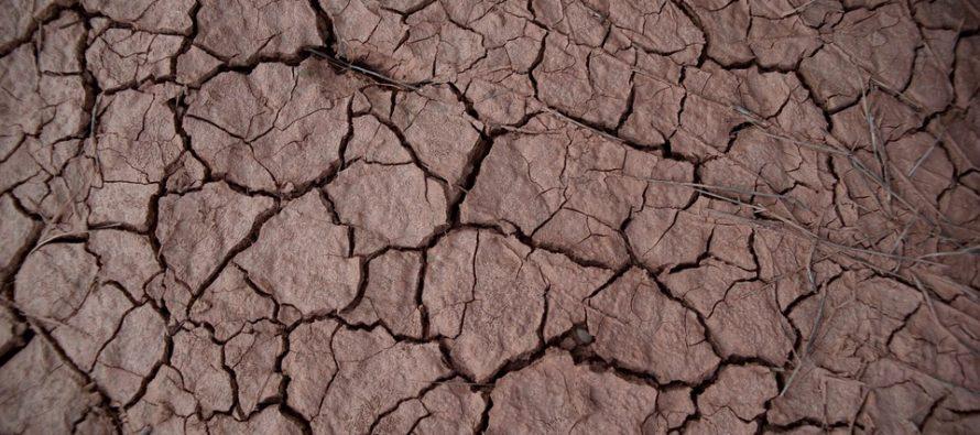 """Il riscaldamento globale sotto i 1,5°C o """"un quarto del pianeta potrebbe diventare arido"""""""