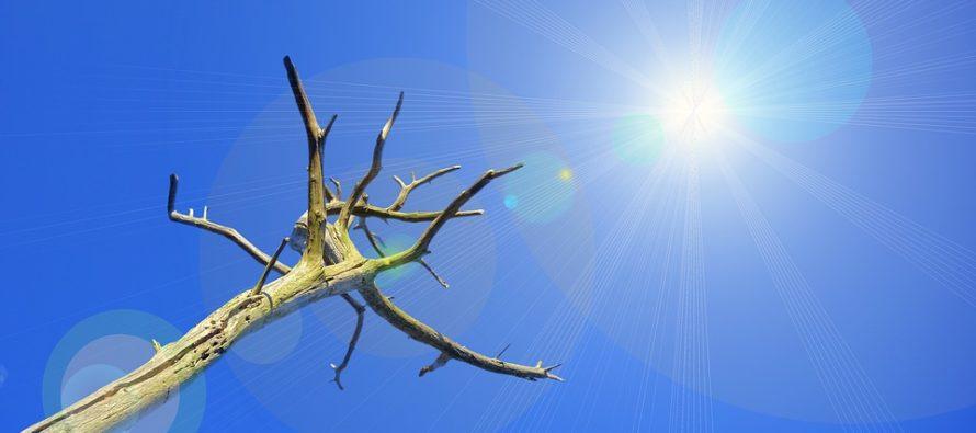 """Ipcc, il rapporto Sr15: """"Il mondo rischia di mancare clamorosamente gli obiettivi sul clima"""""""