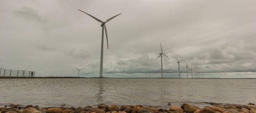 I migranti costruiscono un parco eolico pagandosi una parte del salario minimo
